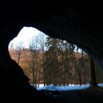 El Oso Cavernario